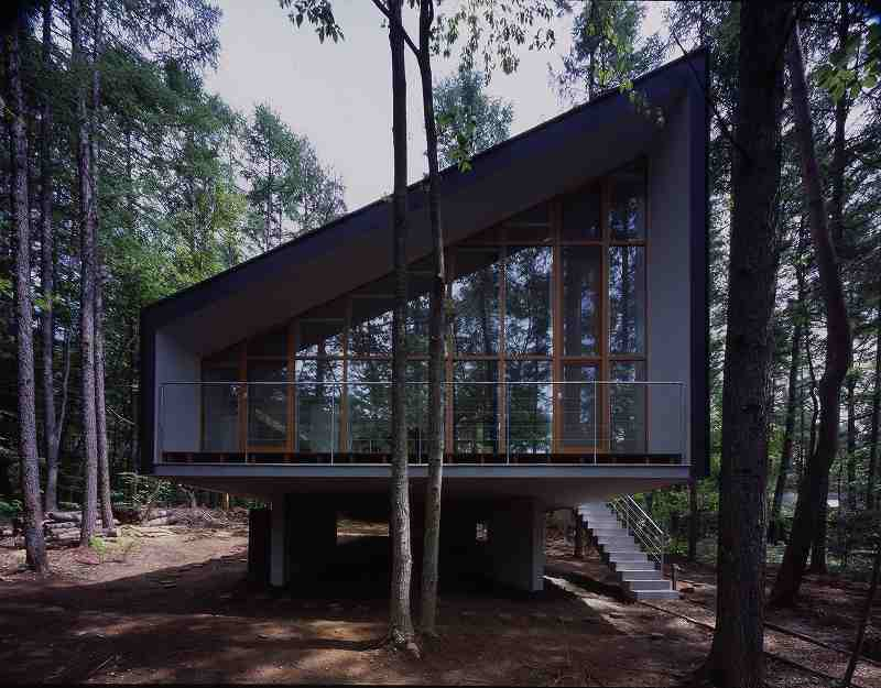 house-to-catch-the-forest-tezuka-architects-02.jpg?rdrts=140525318