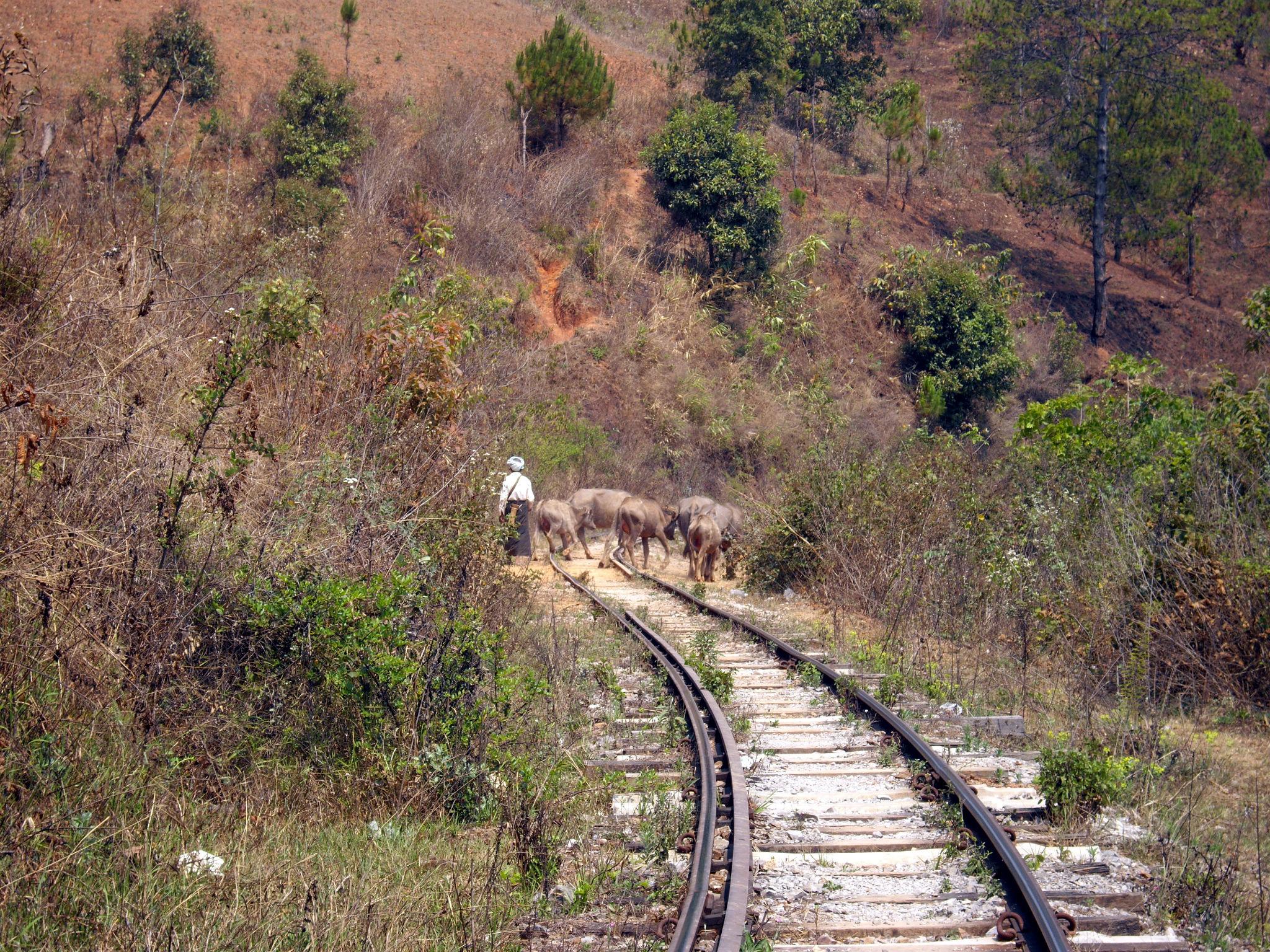 Marcher sur les voies en Birmanie