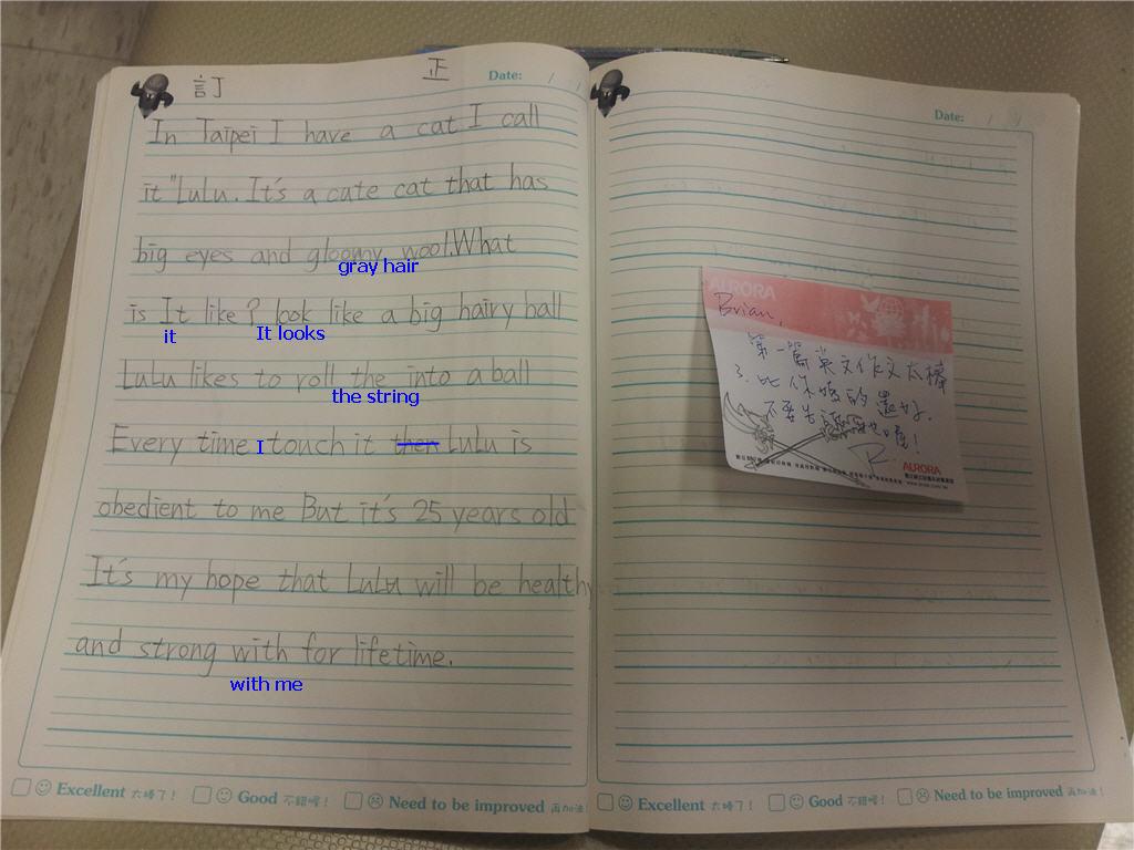 Brian第一篇英文小文